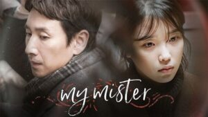Na-ui ajeossi, My Mister Kdrama Review